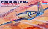 North American P51A Mustang North Africa